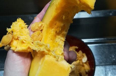 かぼちゃの種の取り方と食べ方は簡単!栄養素も多いし食べてみて!